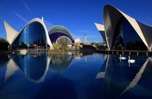 Oceanogràfic en Valencia @CAC