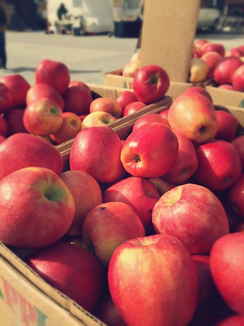 Greenmarket de Nueva York  - puesto de manzanas