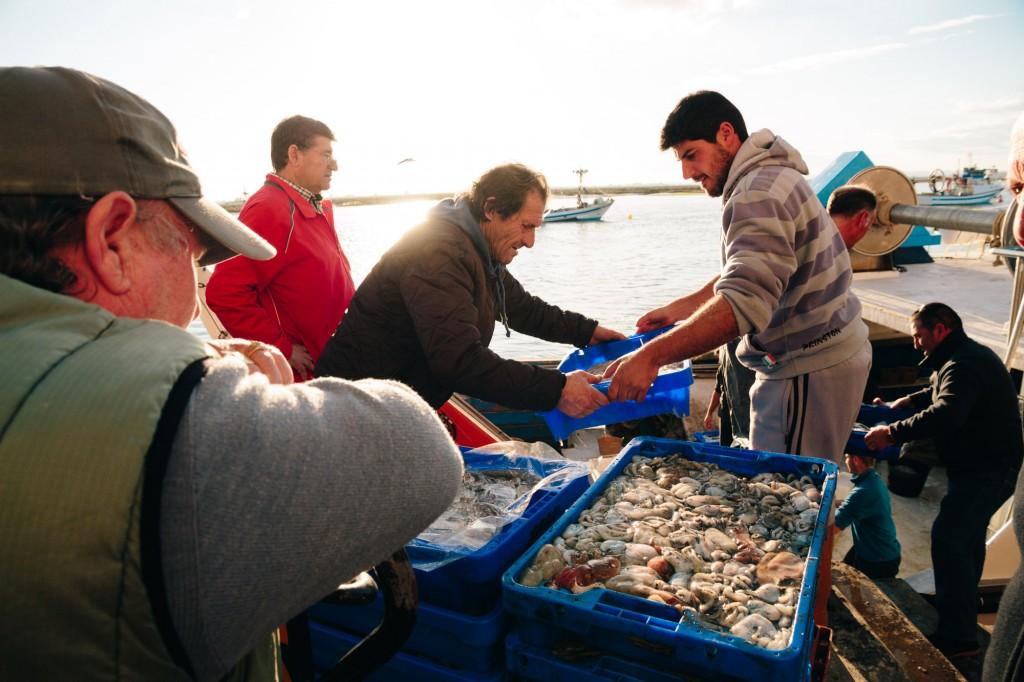 9 cosas para ver en Huelva que no sabías - Lonja Isla Cristina