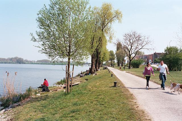 Ribera de los lagos de Mantua