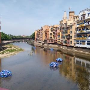 Es Temps de Flors en Girona