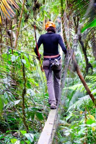 Quito Ecuador - Canopy